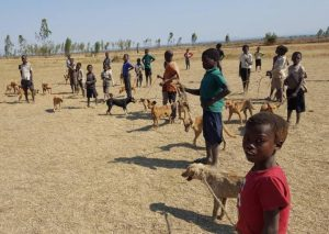 Buiten wachten op vaccinatie tegen Rabiës